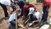 Kalehöyük Arkeoloji müzesinde yaz okulları başladı
