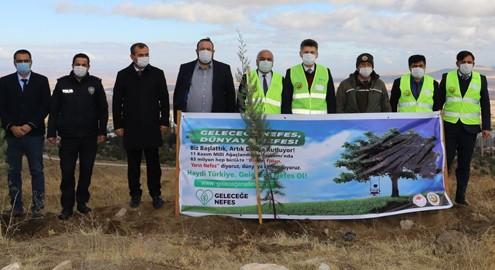 Kaman'da Ağaç Dikimi Gerçekleştirildi